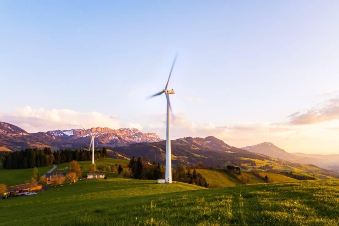 vindmøller i grønt landskab